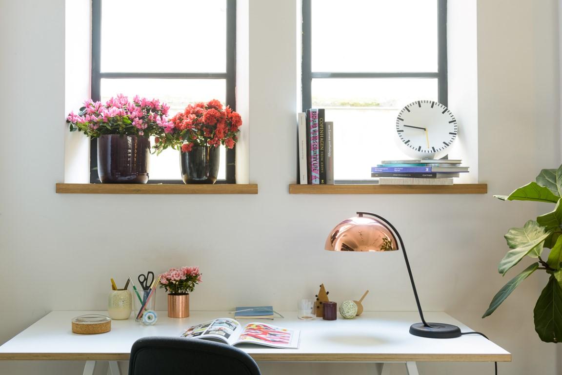 Roze en rode azalea's in modern interieur
